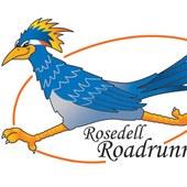 MS-Rosedell-RRmascot