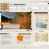 Website option for the US Forest Service