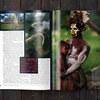 Papua_New_Guinea_sprd2_JHno5_1500
